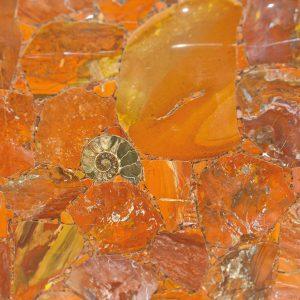 Red Jasper Fossil